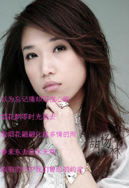 胡杨林吧 对 胡杨林 歌手的评论