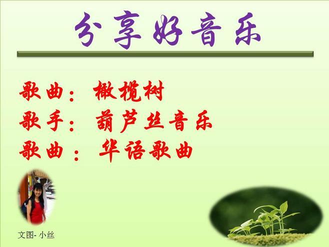葫芦丝纯音乐 橄榄树