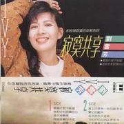 歌手刘雪芳的头像