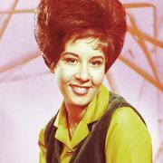 歌手Helen Shapiro的头像